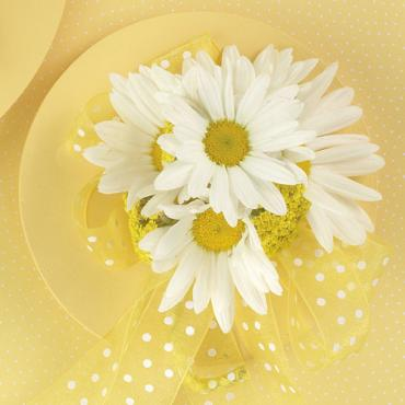 Daisy and Yarrow Corsage