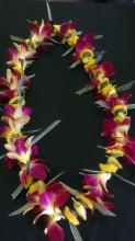 Single Yellow Gold & Red Orchid Lei W/Yellow Button Mums
