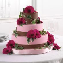 Pink and Brown Fondant Cake with Gerbera Daisies