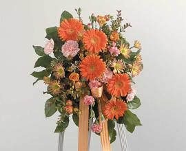 Spray Standing, Gerberas and Mums and Mixed Flowers