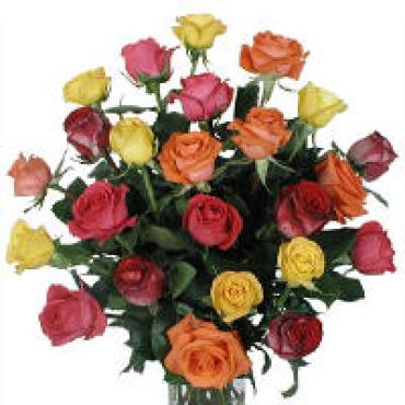 Roses Extra fancy Mixed 2 Dz Vase
