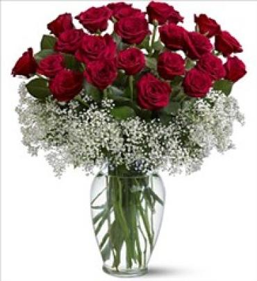 2 dozen Premium, Hot Red, Extra Long Fancy Roses