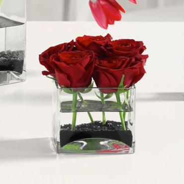 6 Roses in Glass Cube