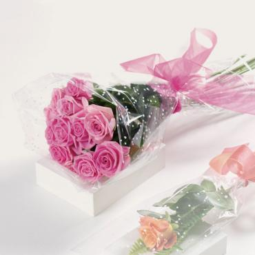 Special Roses Wrapped In Love (Pastels Roses)